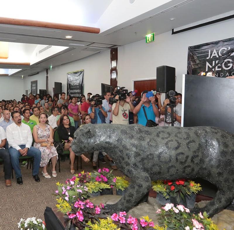 jaguar-negro-12