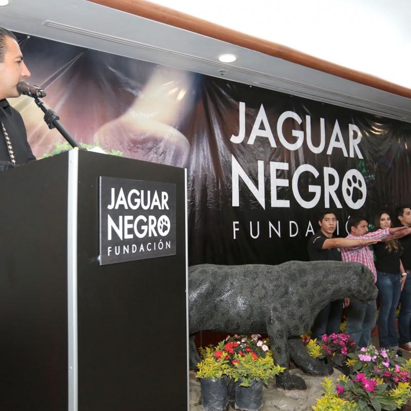 jaguar-negro-35