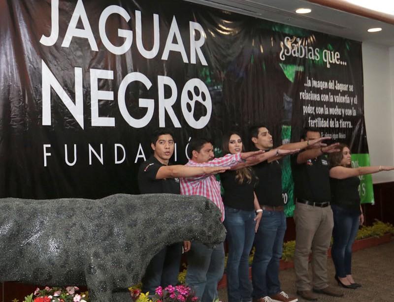jaguar-negro-35-copia