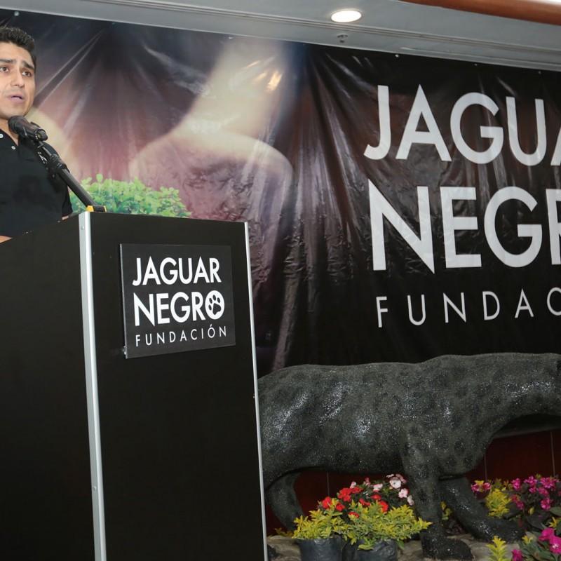 jaguar-negro-6